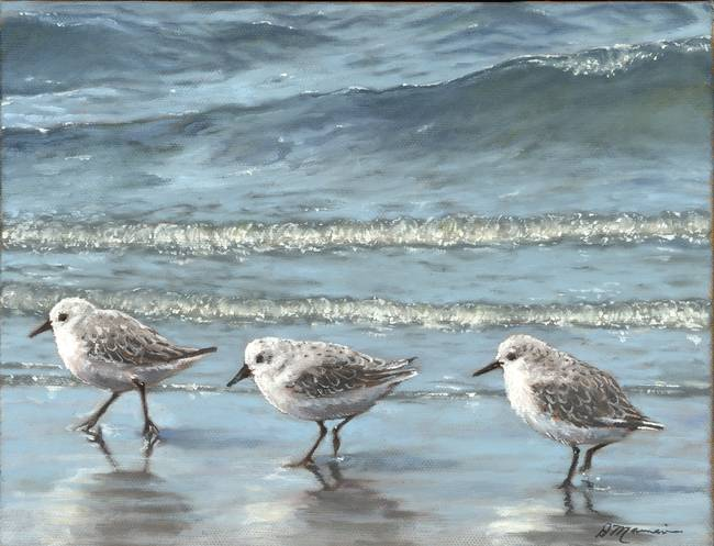 Sandpipers by Diane Mannion