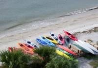 Kayaks & Palms-From Hilton Head Lighthouse