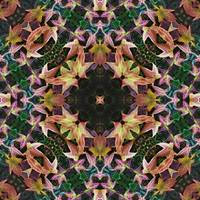 Leaves Magic Kaleidoscope 4