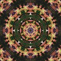 Leaves Magic Kaleidoscope 5