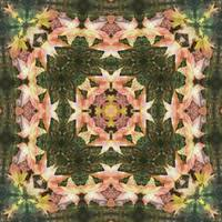 Leaves Memory Kaleidoscope 2