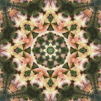 Leaves Memory Kaleidoscope 4