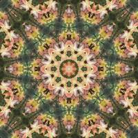 Leaves Memory Kaleidoscope 7