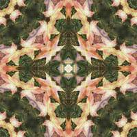 Leaves Memory Kaleidoscope 10