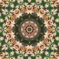 Leaves Memory Kaleidoscope 11