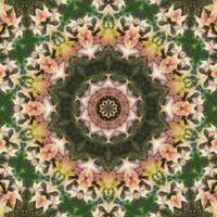 Leaves Memory Kaleidoscope 12
