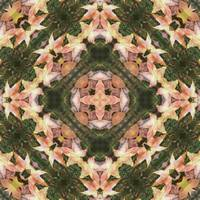 Leaves Memory Kaleidoscope 15