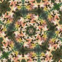Leaves Memory Kaleidoscope 17
