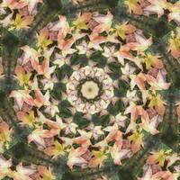 Leaves Memory Kaleidoscope 20