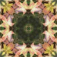 Leaves Memory Kaleidoscope 1