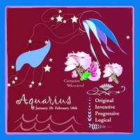 Horoscope Aquarius January