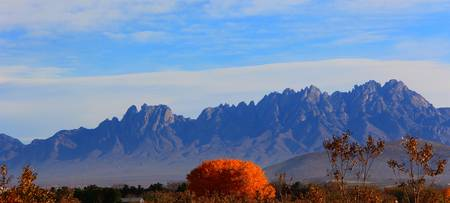 Organ Mountains Autumn