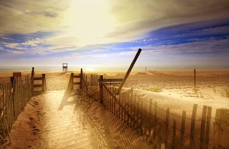 Nauset Beach, Early Morning by Dapixara Art