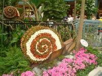 Snail at Bellagio, Las Vegas, Nevada, USA
