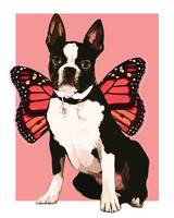 Fairy Boston Terrier