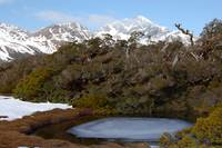 Summit Oasis on top of Routeburn Track New Zealand