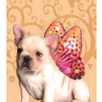 Sweetie Frenchie Art Prints & Posters by Natasha Anne