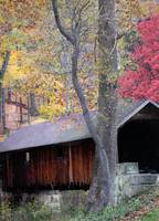 autumn covered bridge 1