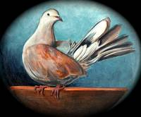 Paloma, Dove painting