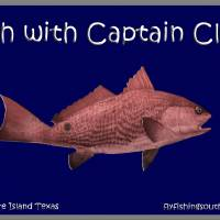 Fish with Capt Cliff Art Prints & Posters by WP Fleming