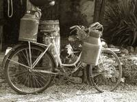 Bicycle with Milk Churns