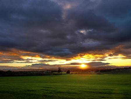 Sunset and Green Field by Richard Thomas