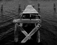 Lake Monroe Dock bw copy.jpg