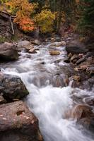 Autumn Stream 4