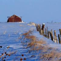 Snowy Farmyard by Thirteenth Avenue Photography