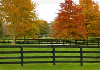 kENTUCKY HORSE FENCES