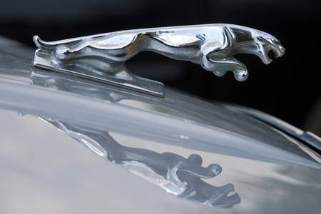 Jaguar Car Hood Ornament Reflection