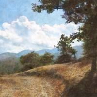 Mountain Path by Faye Cummings