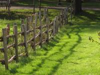 Fence Lines & Shadow_7385