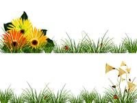 headers with flowers, grass and ladybugs