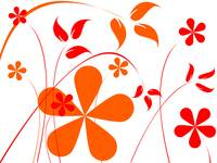 orange and red flowers composition