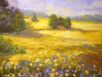 Golden Meadow