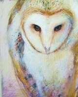 Barn Owl - Solitare