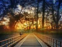 Bridge into Sunset