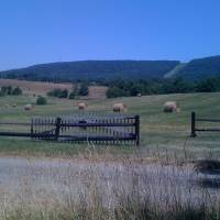 """Rural Virginia Hayfield"" by cathypiercepayne"