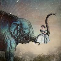 """""""Bedtime Stories"""" by Catrin-Stein"""