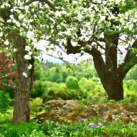 Spring In Paradise Art Prints & Posters by Robin EL-Hachem