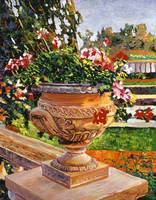 Urn of English Geraniums