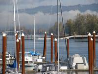 Foggy Morning on the Columbia River, St Helens, Or
