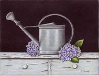 Watering Can And Hydrangeas