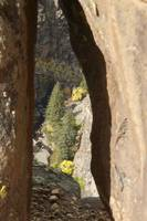 Portal to the Black Canyon