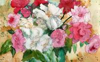 Watercolor Flowers, Pretty Peonies, pink