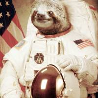"""Astronaut Sloth"" by BakusPT"