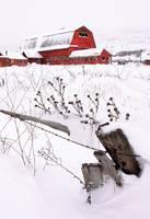 Winter Barn III by David Kocherhans