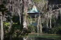 Gazebo in the Swamp