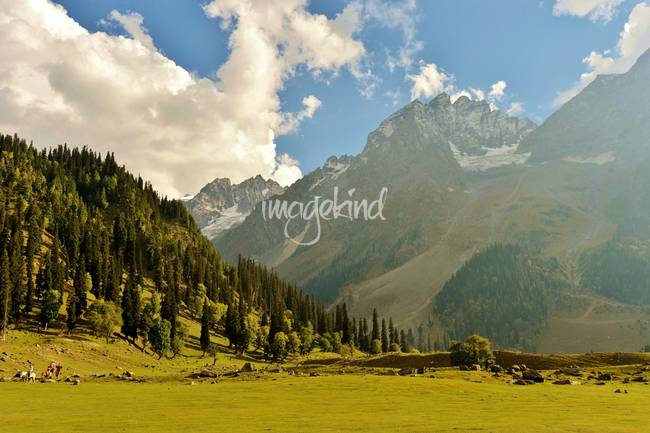 Sonmarg, the meadow of gold kashmir